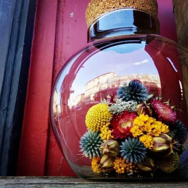 Galerie Fleurs Sechees 02