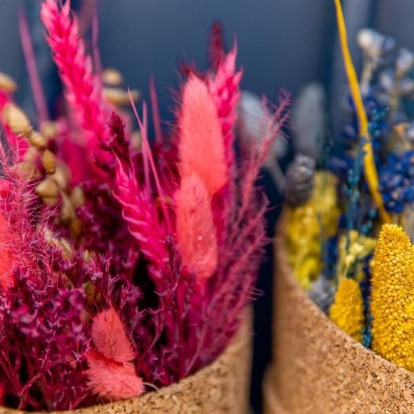 Galerie Fleurs Sechees 06