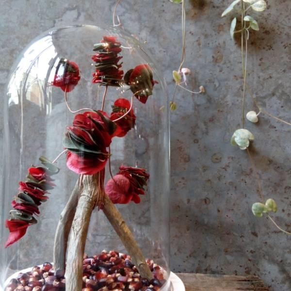 Galerie Fleurs Sechees 13