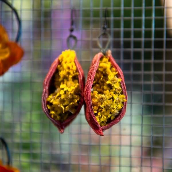 Galerie Fleurs Sechees 35